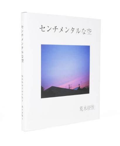 """Sentimental Sky"", Nobuyoshi Araki, Rathole 2012"