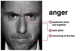 microexpressions_anger