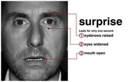microexpressions_surprise