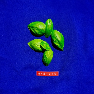 20 feuilles de basilic